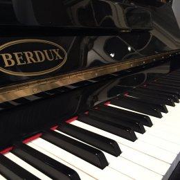 - Andere Marke - Berdux UP 123 von 1996 in Zwart glimmend
