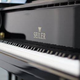 Seiler 186 Maestro Bj.2008 von 2008 in Zwart glimmend
